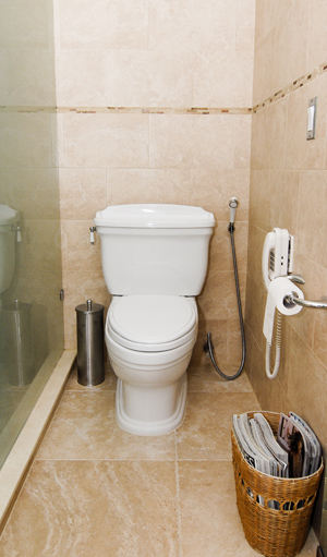 The Danger of Pressure Assisted Toilets