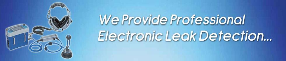 professional-electronic-lea