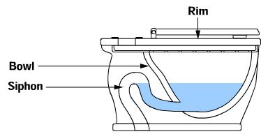 Toilet siphon diagram